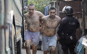 el salvador transfers gangsters from barrio 18 gang to maximum