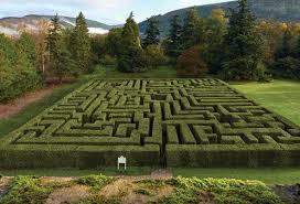 the traquair maze traquair house