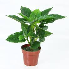 Imitation Plants Home Decoration Compare Prices On Indoor Artificial Trees Online Shopping Buy Low