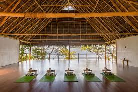 imagenes estudios yoga a yoga retreat in puerta vallarta mexico freshgrub