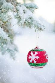 free images branch snow winter celebration pine bulb