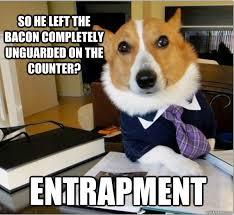 Dog Bacon Meme - top five lawyer dog internet meme petcarerx