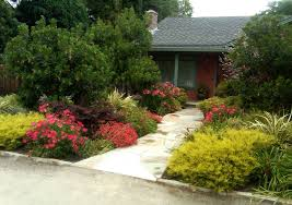 English Garden Design Ideas Front Without Grass Designs For