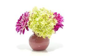 dalia in vaso fiori della dalia in vaso immagine stock immagine di dalia 15014109