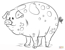 cartoon pig for coloring page animal free printable pig