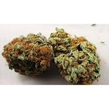 fruit by mail mail order mail order marijuana mail order