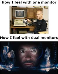 Meme Monitor - how i feel gaming with dual monitors beheading boredom