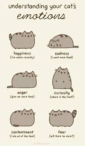 Pusheen The Cat Meme - understanding your cats emotions weknowmemes