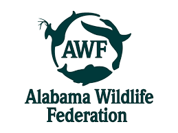 Alabama wildlife images Alabama wildlife federation awf jpg