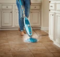 amazon com hoover steam mop twintank steam cleaner wh20200 home