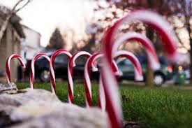 free stock photos of candy cane pexels