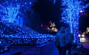 Frosty Blue Christmas Decorations by Dyker Heights Christmas Lights In New York City U2013 A Slice Of