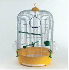 gabbie per canarini gabbia per uccelli margherita raggio di sole mangimi pet