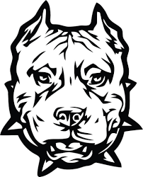 pitbull coloring pages american pitbull terrier coloring page free