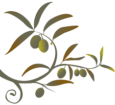 image of olive tree clipart 2133 olive tree branch clipartoons