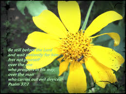 Scriptures Of Comfort And Peace Scripture Memes To Remind You Do Not Worry Be Still And Know He