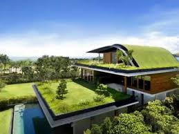 Meera House Amazing House Design Ideas With Sky Garden