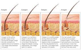 plucking pubic hair the laser place electrolysis