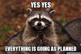 Racoon Meme - evil raccoon weknowmemes generator