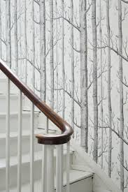 the 25 best tree wallpaper ideas on pinterest bedroom wallpaper
