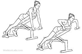 Bench Exercises With Dumbbells Dumbbell Incline Bench Row Illustrated Exercise Guide Workoutlabs