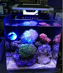 Reef Aquarium Lighting Amazon Com Led Light Coral Grow Marine Reef Tank White Blue