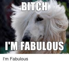 25 best memes about bitch im fabulous bitch im fabulous memes