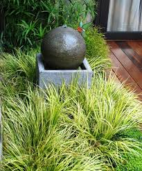 ornamental grasses that thrive in coastal gardens