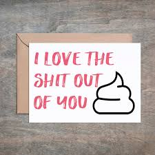 love the s t out of you funny anniversary card funny love card funn