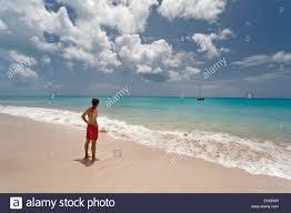 pink sand beach barbuda leeward islands caribbean stock photo