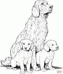printable puppy color coloring pages puppies pictures animal