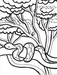 free coloring page of the rainforest jungle coloring pages to download and print for free jungle coloring