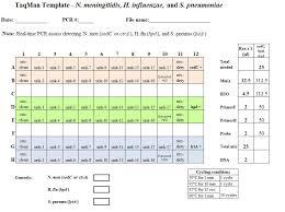 meningitis lab manual pcr detection and characterization cdc