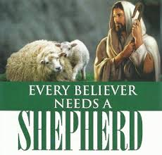 the living word our daily bread every believer needs a shepherd