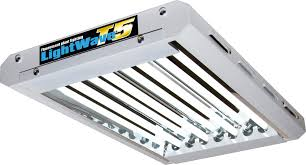 fluorescent lighting fluorescent grow light bulbs t8 fluorescent