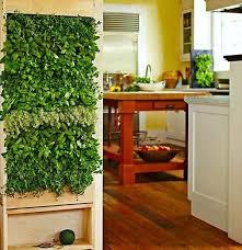home interior garden 26 mini indoor garden ideas to green your home amazing diy