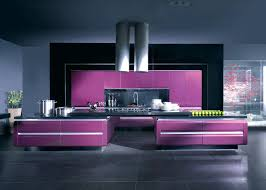 wood closeout modern kitchen cabinets with purple lacquer finishes