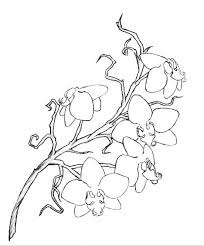 rough orchid tattoo design by lelio rising on deviantart