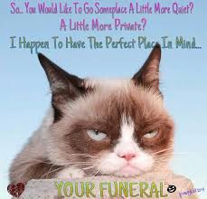 Original Grumpy Cat Meme - original grumpy cat meme 28 images 9 best grumpy cat memes