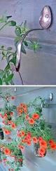 wall plant holders top 20 stunning diy garden pots and containers garden pots