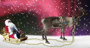 christmas deer domino s pizza japan testing delivery by reindeer for winter