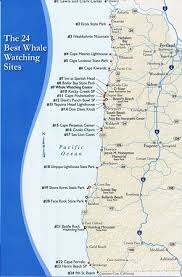 map of oregon state parks brochure info from the whale center depot bay oregon
