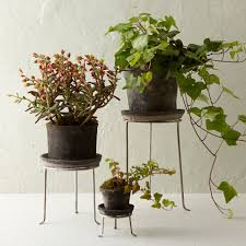 plant stand plant stand phenomenal indoor plants image design