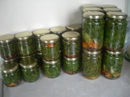 cuisiner salicorne la salicorne conserve façon echalotes de papa delices d edith