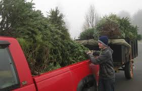 recycling is as easy as one two three christmas tree recycling