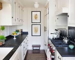 beach kitchen design 10 best small beach style kitchen ideas u0026 remodeling photos houzz