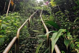 Hawaii Haiku Stairs by Be A Rebel Climb The Stairway To Heaven 203challenges
