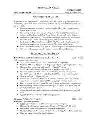 Sample Resume Information Technology Resume Example Problem Solving Skills Augustais