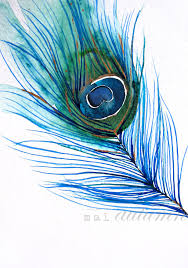 sale 20 off peacock feather i bird art 8x10 print