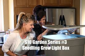 Kitchen Light Box by 10 Garden Series 3 How To Make An Indoor Grow Light Box For
